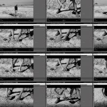 Erde vom Ufer des Totes Meeres. Video-Dokumentation.
